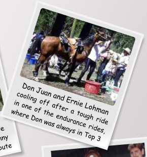Don Juan and Ernie Lohman cooling off after a tough ride in one of the endurance rides, where Don was always in Top 3