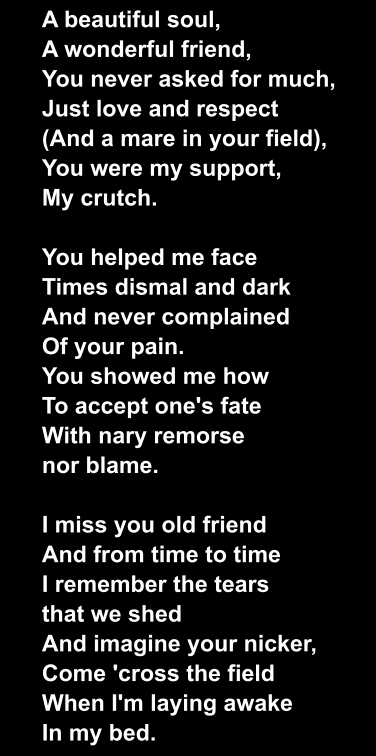 A beautiful soul, A wonderful friend, You never asked for much, Just love and respect (And a mare in your field), You were my support, My crutch.  You helped me face Times dismal and dark And never complained Of your pain. You showed me how To accept one's fate With nary remorse nor blame.  I miss you old friend And from time to time I remember the tears that we shed And imagine your nicker, Come 'cross the field When I'm laying awake In my bed.